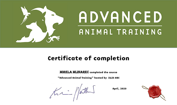Certificate of completion Mirela Mlinarec